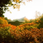 東福寺の臥雲橋から通天橋の景色