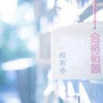 コスモスの咲くお寺で『光』をテーマに個人レッスン〜1