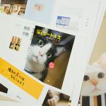 初の猫写真集『猫とビートルズ』本日発売