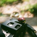 トイカメラの購入は「メルカリ」が安い!?