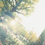 【大阪】2018年ワークショップ(日曜・木曜)